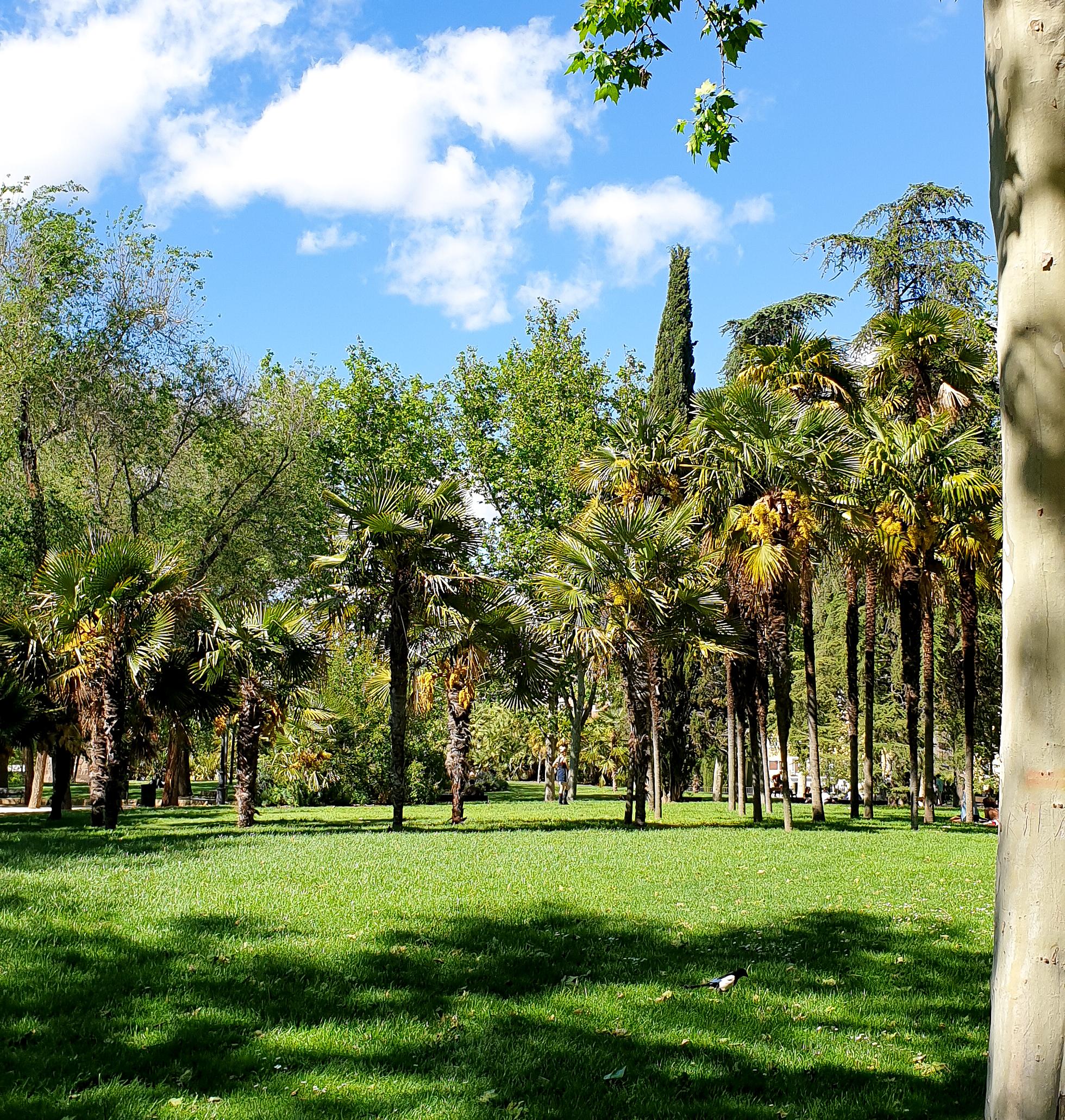 Parque del Oeste Madrid